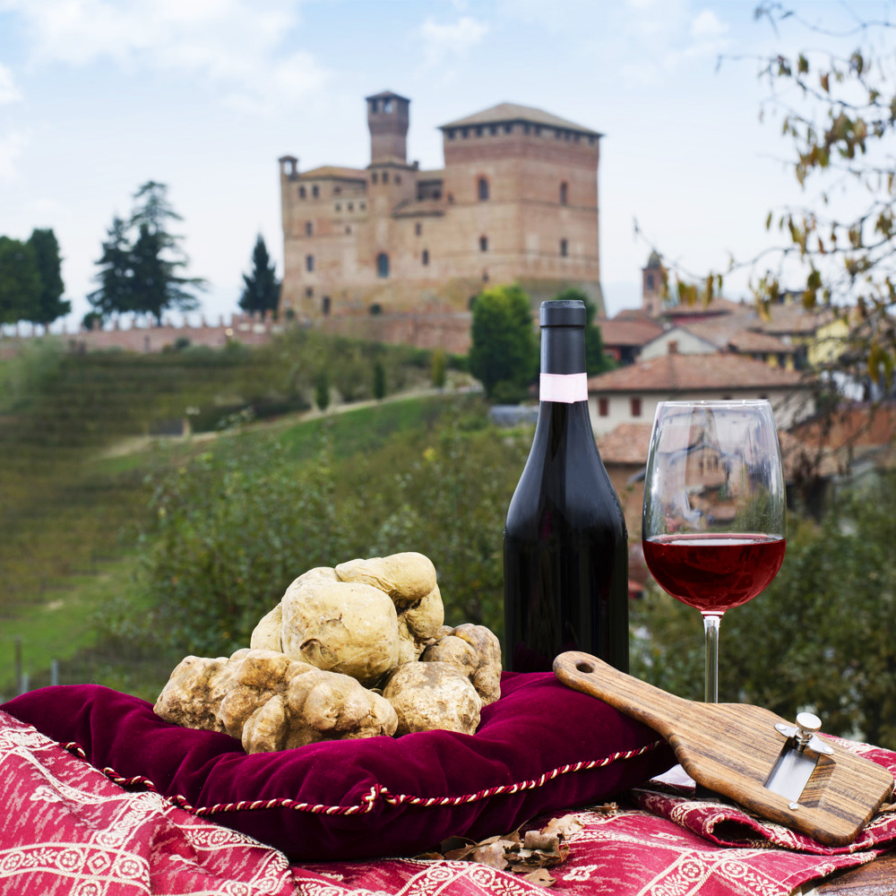 BARBARESCO WINE TOUR WITH TRUFFLE HUNTING